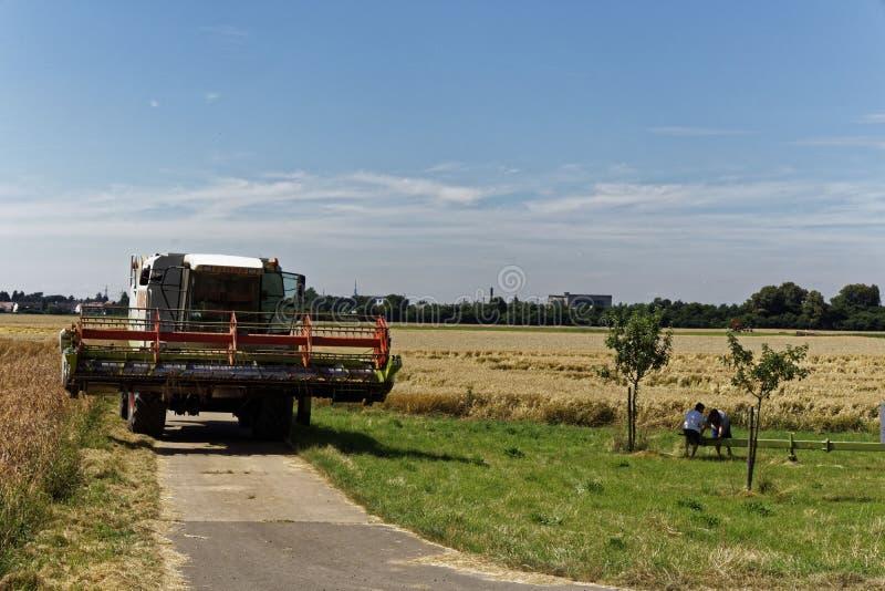 收获的农夫在夏天 免版税库存照片
