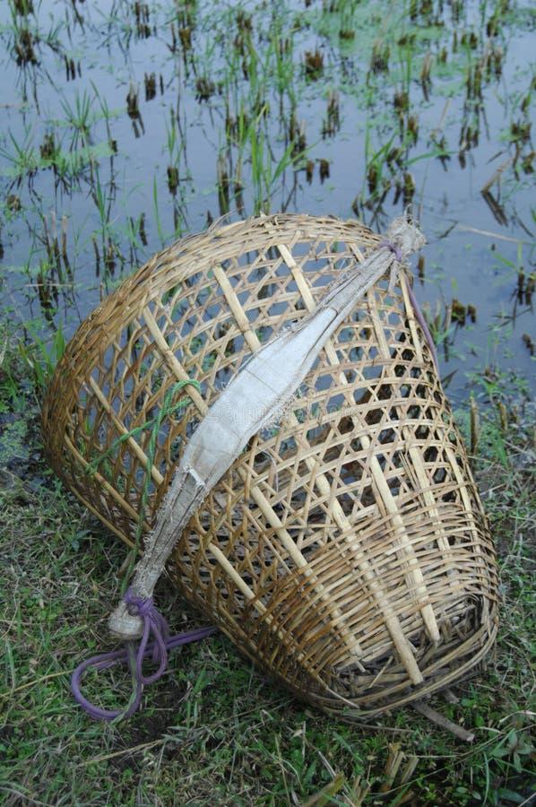 收获的篮子在尼泊尔 免版税库存图片