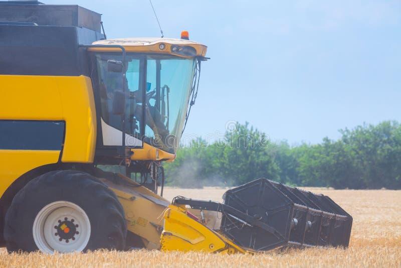 收获的粮食作物机器-在行动的联合收割机对黑麦领域晴朗的夏日 r 免版税库存图片