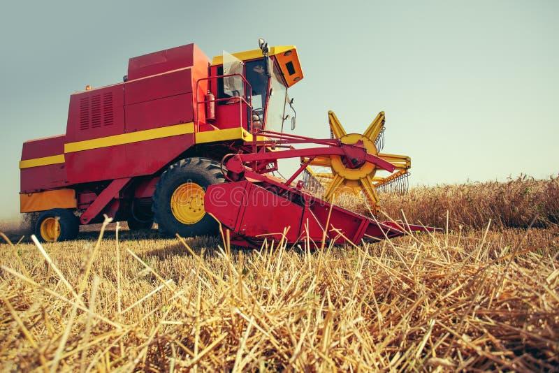 收获麦子收割机在一个晴朗的夏日 库存照片