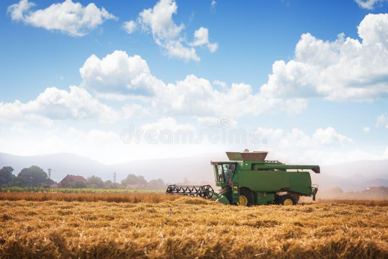 收获麦子收割机在一个晴朗的夏日 图库摄影