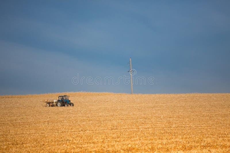 收获麦子的联合收割机在晴朗的夏日 免版税库存图片