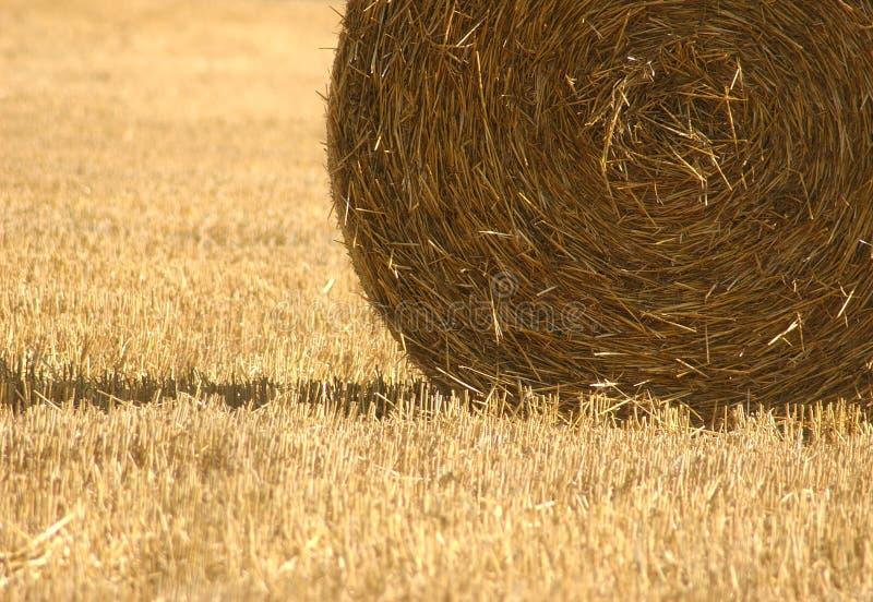 Download 收获麦子 库存图片. 图片 包括有 农村, 谷物, 织地不很细, 对比, 麦子, 收获, 庄稼, 乡下, 纹理 - 191117