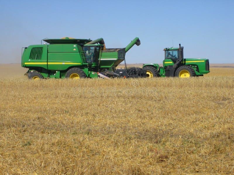 收获麦子 免版税库存图片