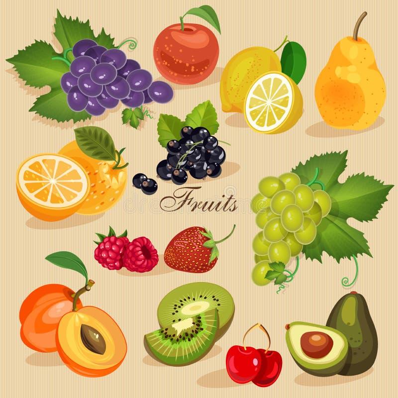 收获水多的果子和莓果,传染媒介例证 绿色副食品 向量例证