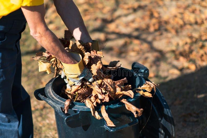 收集下落的秋叶的人在围场 库存图片