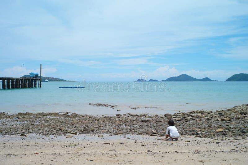收集在海滩的小女孩壳 库存照片