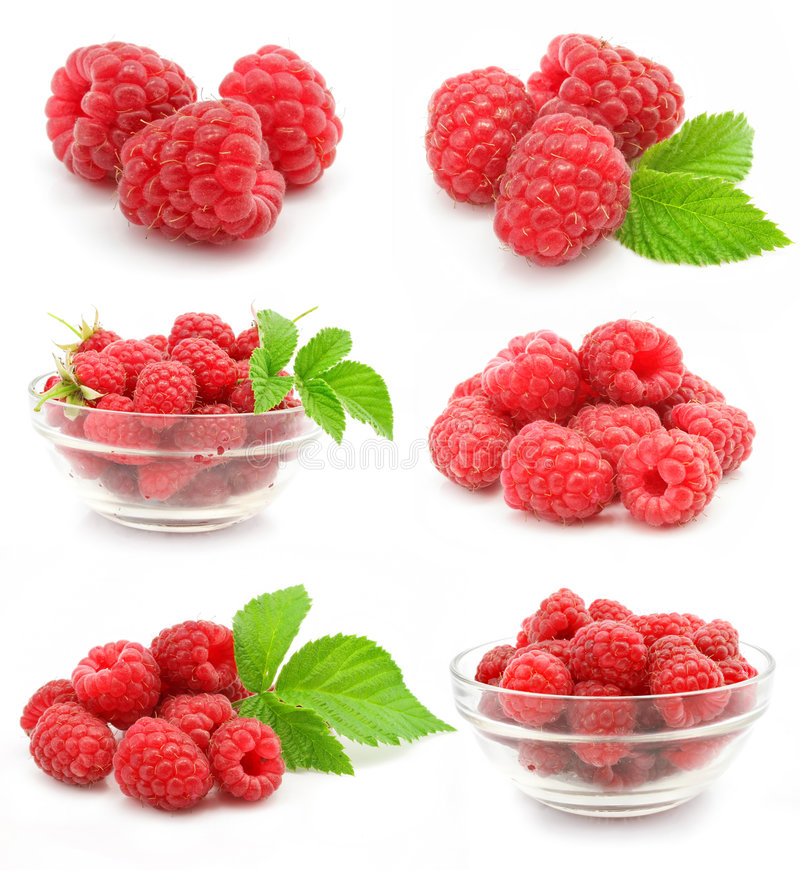 收集果子查出莓红色 免版税库存图片