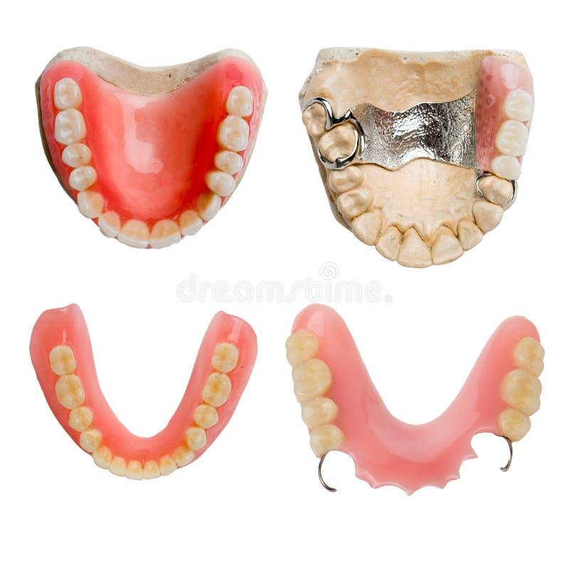 收集牙齿充分的假肢范围 免版税图库摄影