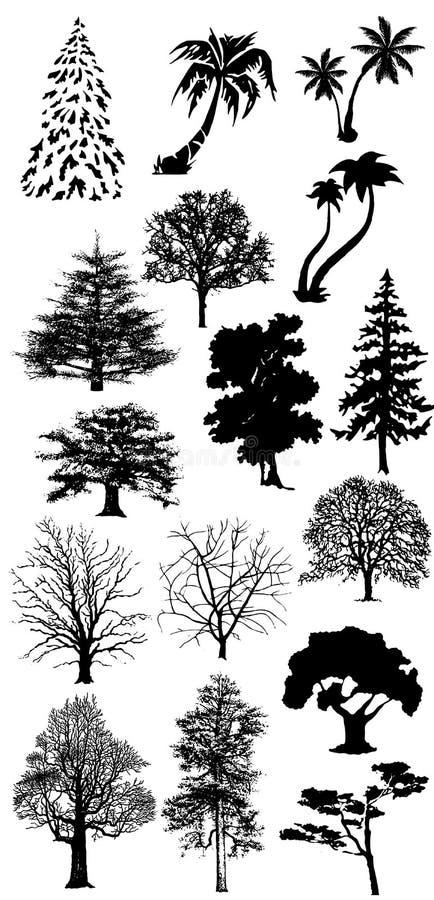 收集现出轮廓结构树 向量例证
