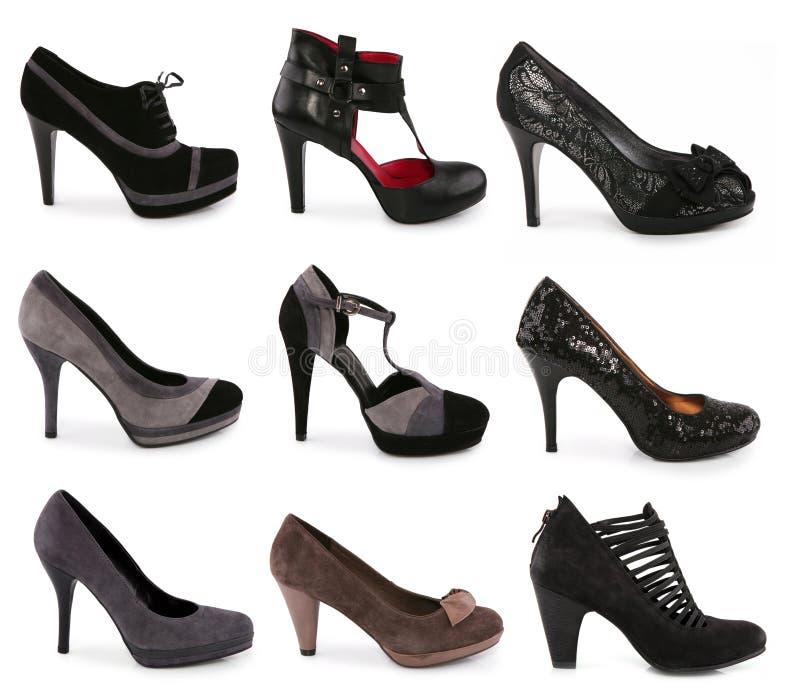 收集穿上鞋子多种类型 免版税库存图片