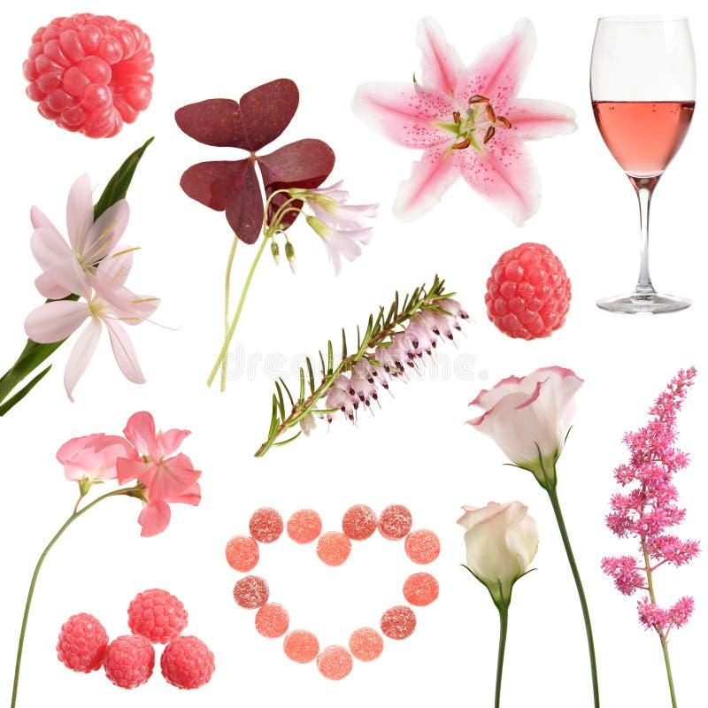 收集粉红色 免版税库存照片