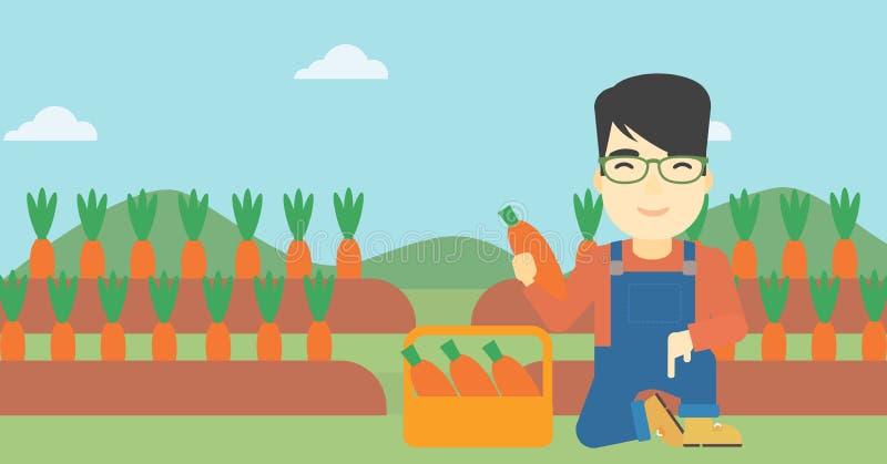 农夫77导航_拿着在领域背景的年轻农夫一棵红萝卜  导航平的设计例证 水平的布局