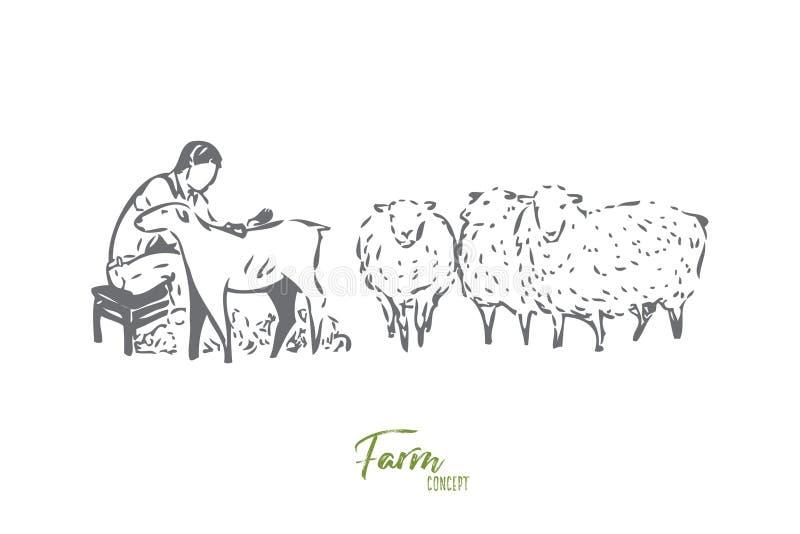 收集羊毛概念剪影 r 库存例证