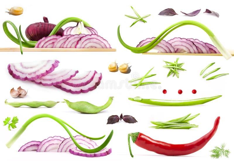收集蔬菜 库存例证
