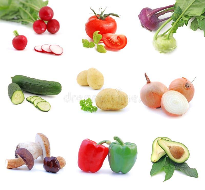 收集蔬菜 免版税库存照片