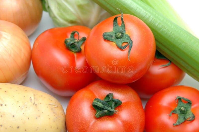 收集蕃茄蔬菜 免版税库存照片