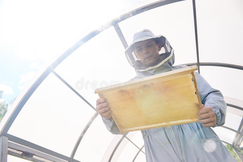 收集蜂蜜的现代养蜂家 免版税库存图片