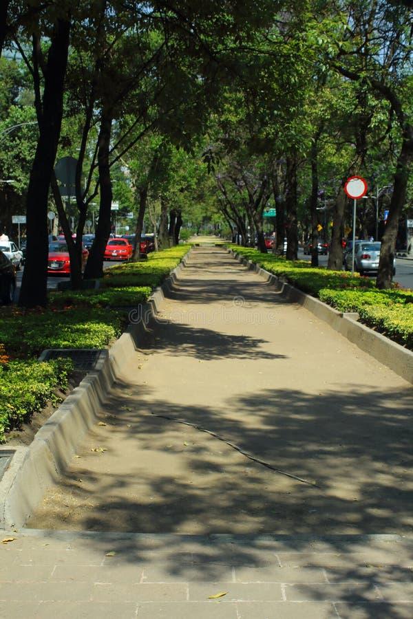 改革大道是最重要和最象征的大道在墨西哥城 免版税库存图片