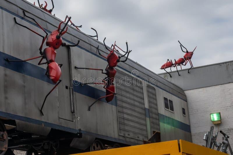 攻击火车的巨型红色蚂蚁在醋围场 免版税图库摄影