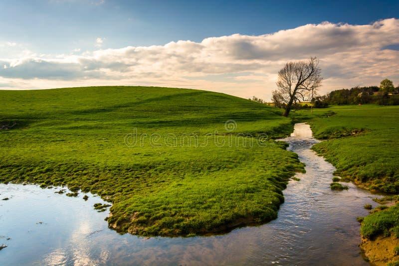 放出在一片农田在农村约克县,宾夕法尼亚 免版税库存图片