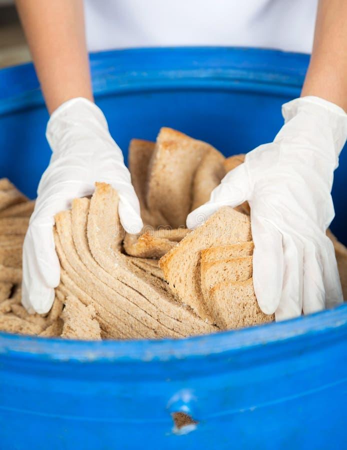 放弃在垃圾的妇女的手面包废物 免版税图库摄影