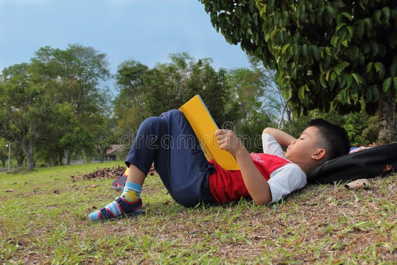 放松在公园的一个逗人喜爱的男孩读书 免版税图库摄影