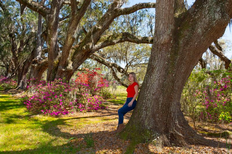 放松在公园的年轻女人在与寄生藤的橡树下 免版税库存图片
