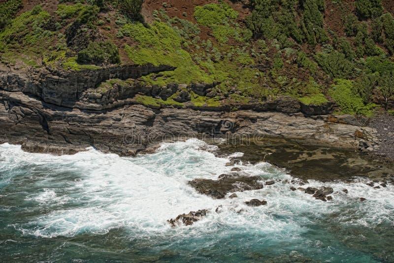 放松在岩石的封印在夏威夷考艾岛 库存图片