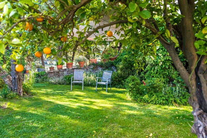 放松在有椅子的美丽的庭院里 图库摄影