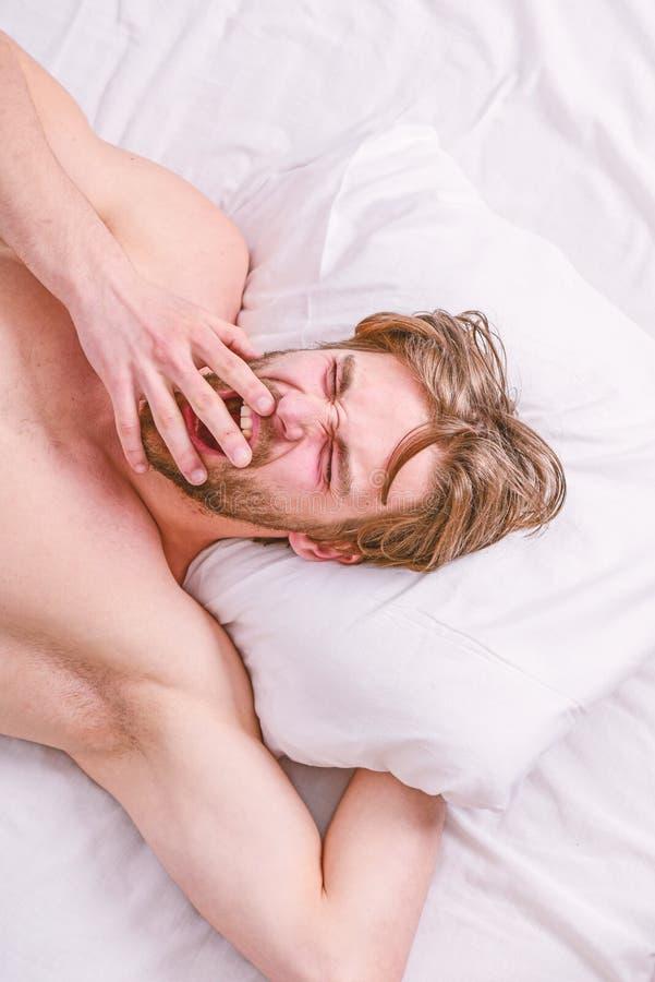 放松在枕头的有胡子的人睡觉面孔 人帅哥在床上放置 在睡觉的专家的技巧更好 得到充分 免版税库存照片