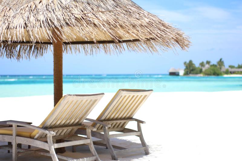 放松在白色沙子海滩在马尔代夫 免版税库存图片