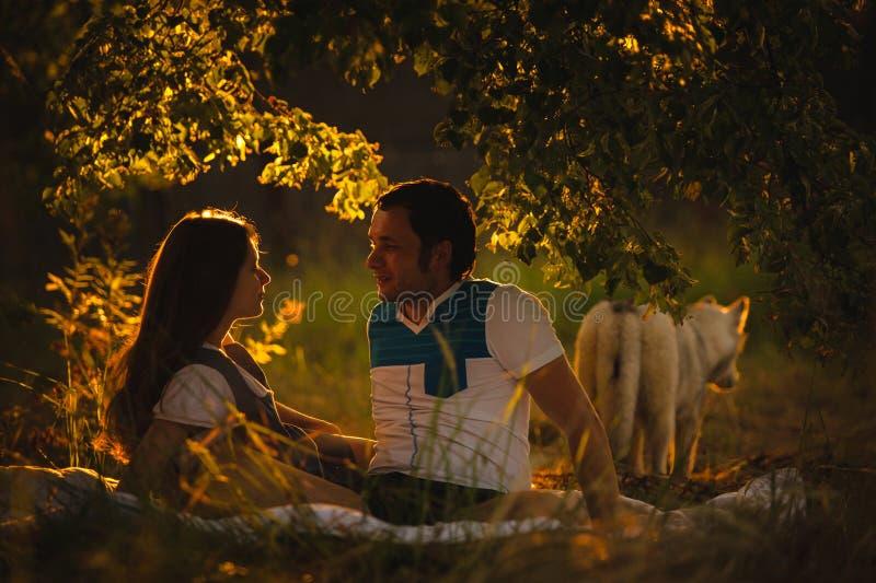 放松在绿草的愉快的微笑的夫妇  库存照片