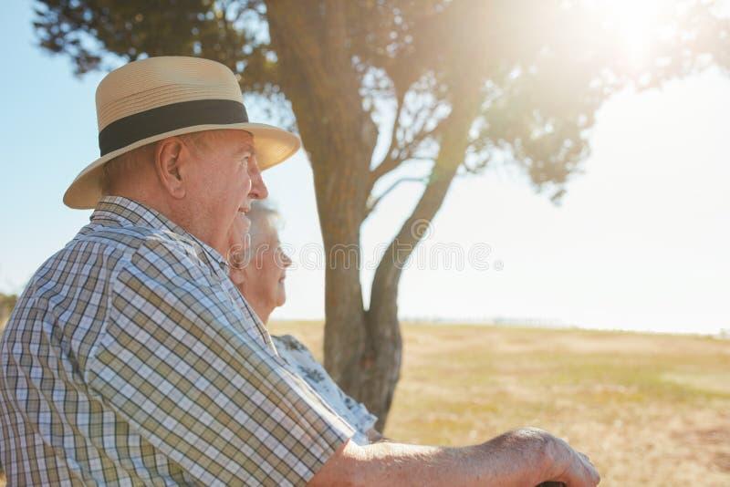 放松户外在一个夏日的年长夫妇 库存图片