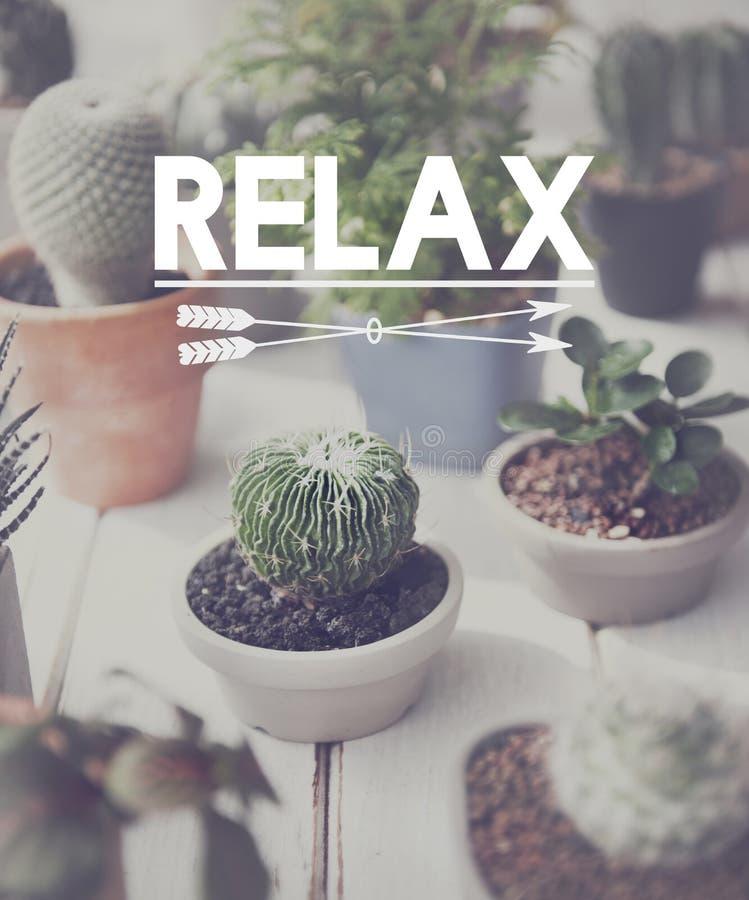放松放松使和平休息的平静概念变冷 库存图片