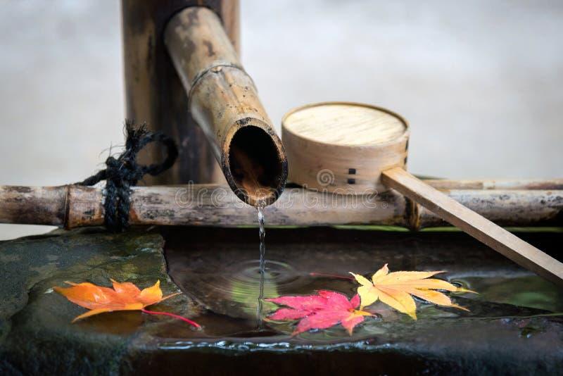 放松的日本禅宗庭院 免版税图库摄影