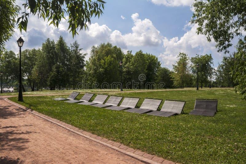 放松的Sunbeds在公园 绿色胡同和道路 免版税库存照片
