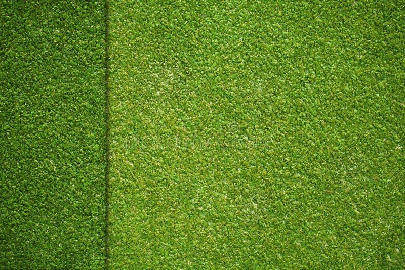 在人为高尔夫球领域的草纹理 库存图片