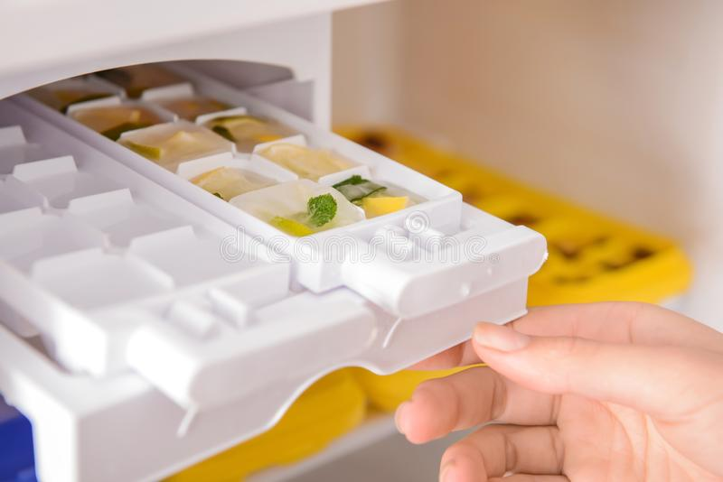 放盘子用柑橘水果的妇女结冰在冰块入冰箱 库存图片