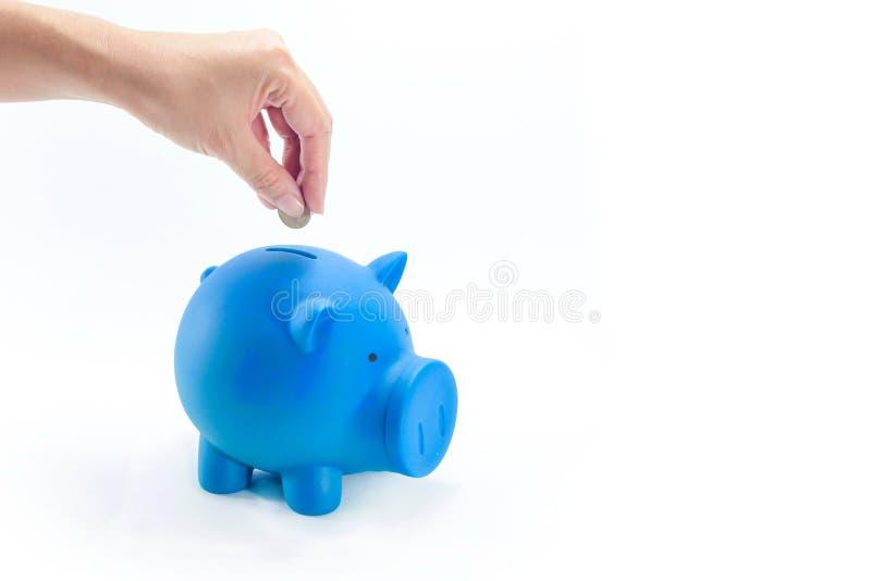 放硬币入蓝色存钱罐 图库摄影