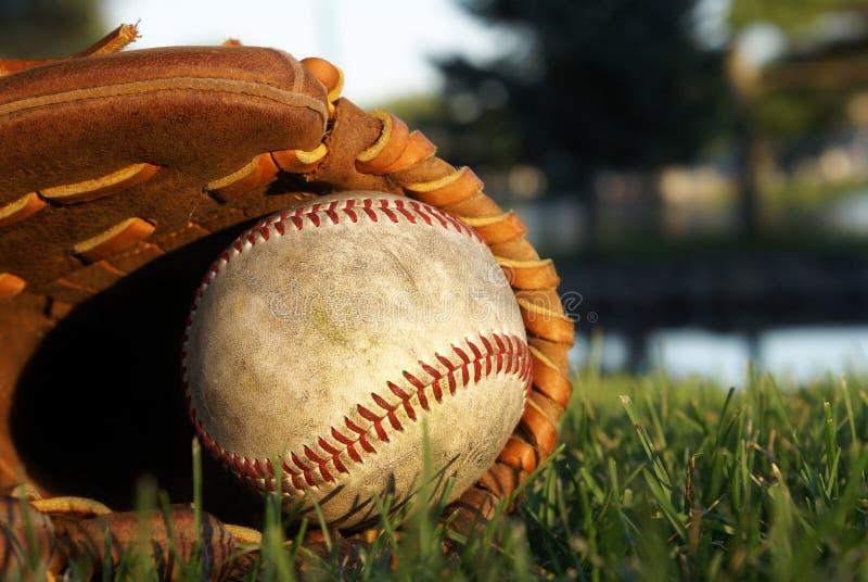 Download 放置在草的棒球手套 库存图片. 图片 包括有 露指手套, 竹子, 佩带, 季节性, 棒球, 手套, 陆运 - 59107613