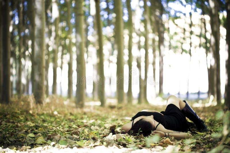 放置女孩在森林 库存图片