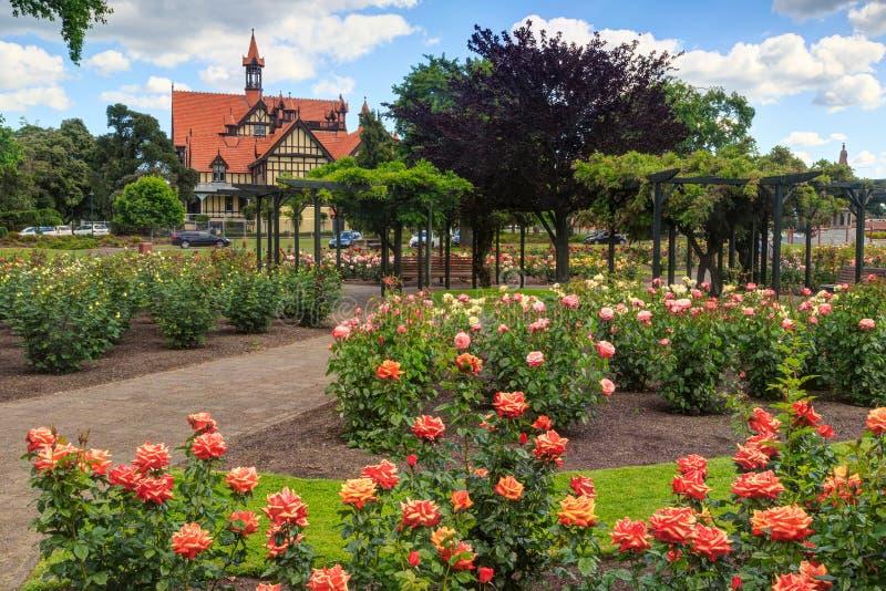 政府庭院,罗托路亚,新西兰 有罗托路亚博物馆的玫瑰园在背景中 库存照片