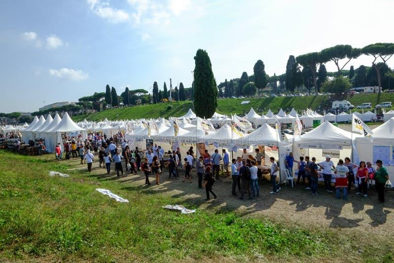 政治示范在罗马 免版税图库摄影