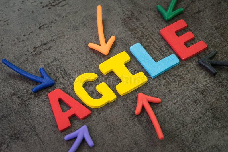 敏捷发展,软件,想法,工作流管理概念,指向词敏捷的多颜色箭头的新的方法学 库存图片