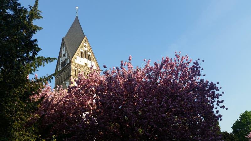 教会和开花的树 免版税库存图片