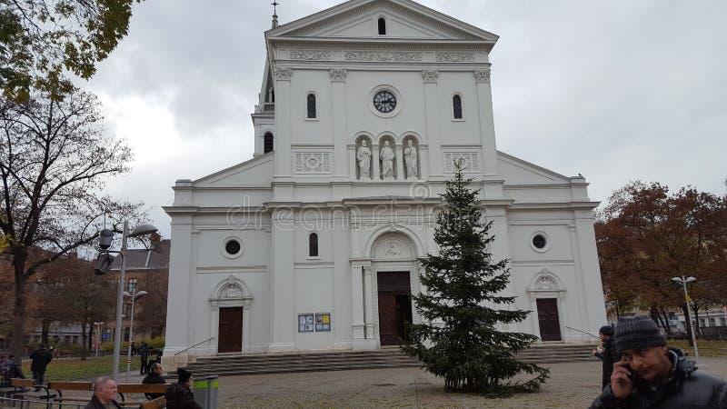 教会在维也纳 库存照片