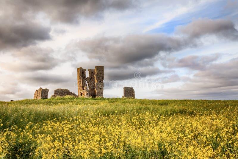 教会在黄色庄稼的废墟风景 免版税图库摄影