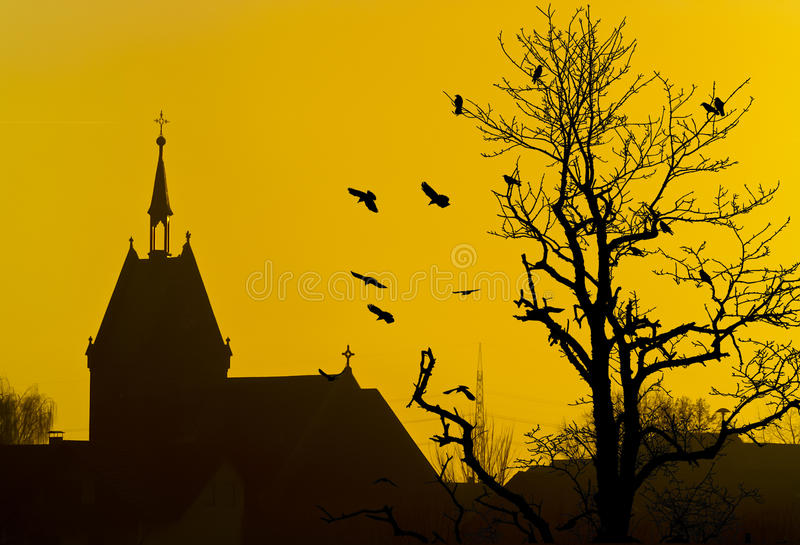教会鸟结构树剪影 图库摄影
