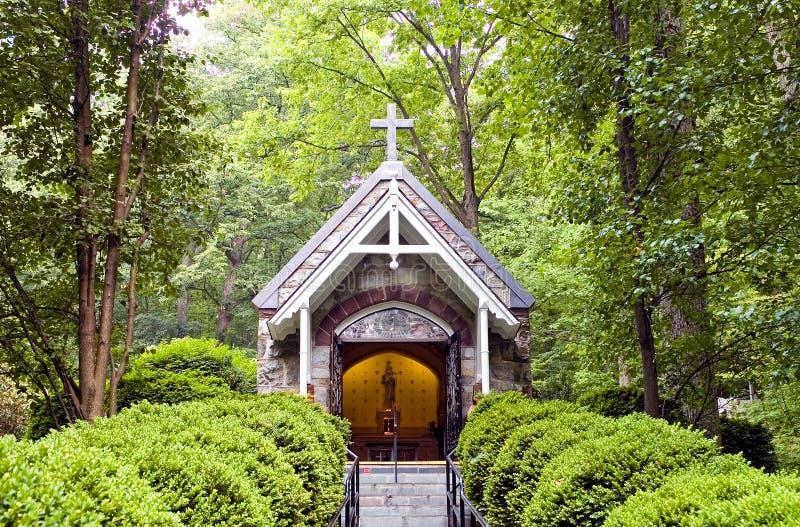 教堂森林 免版税图库摄影